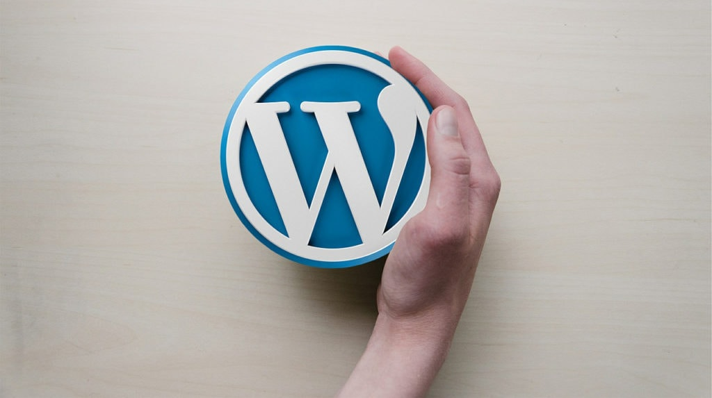 10 Reasons You Should Be Using WordPress For Your School Website